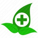 Medicine leaves icon